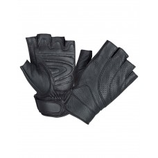 Fingerless Gloves (8101.00)